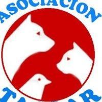 asociación TAALAR
