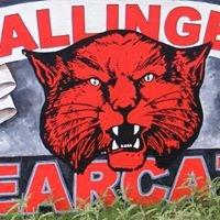 Ballinger High School Counseling Center