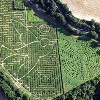 Labyrinthe Végétal