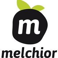 Melchior Coworking - Espace de travail partagé