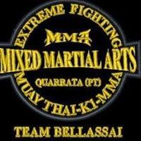 MMA quarrata Pistoia