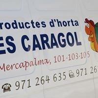 Productes D'horta ES Caragol