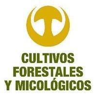 Cultivos Forestales y Micologicos