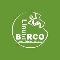 Linum Berco
