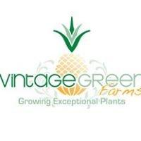 Vintage Green Farms - Tom Piergrossi
