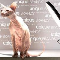 Unique Brands B.V.