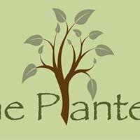 The Plantery