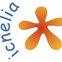 Icnelia ONGD