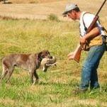 Noble Ridge Hunting Preserve