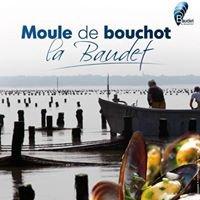 SAS Baudet Moules de Bouchot