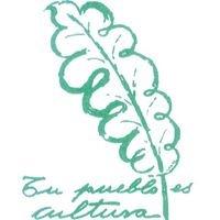 Cultura Ayuntamiento La Zubia