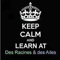Collège Des Racines & des Ailes
