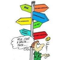 Bilan d'Orientation Scolaire et Professionnelle - Cabinet Nouvel Envol