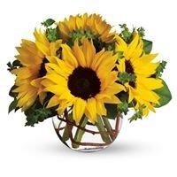Hill's Wholesale Florist