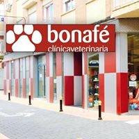 Clinica Veterinaria Bonafé (C.M.E.V)