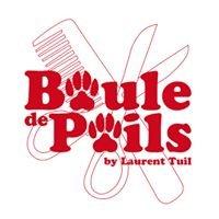 BOULE DE POILS - Salon d'esthétique canine by Laurent Tuil