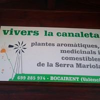 Vivers la Canaleta i Floristería Pelegrina