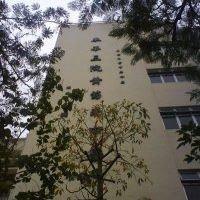 TWGHs Wong Fut Nam College