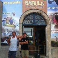 Barbule