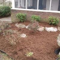 Collins Lawn Care & Landscaping