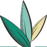 Dietética Herboristería Esencial Esencial