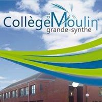 Collège du Moulin