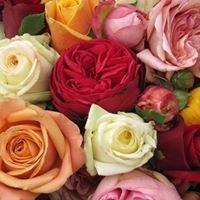 Karine  Venet   grossiste en fleurs coupées
