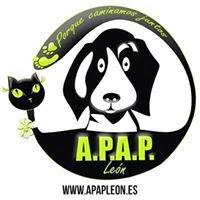 Asoc. Protectora Animales y Plantas de León