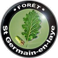 La forêt de Saint Germain en Laye 78100 sgc