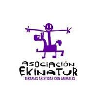 Asociación Ekinatur TACA Acción Social
