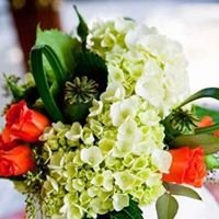 Bloom Floral Designs and Gifts
