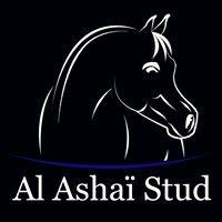 Al Ashaï Stud