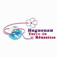 Haguenau, Terre de Réussites
