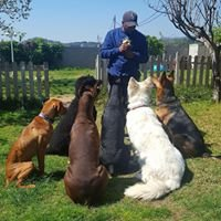 Nay Hamat Educador Canino-Humano