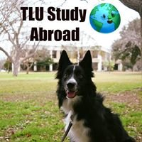 TLU International Education