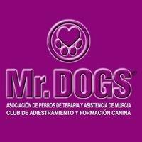 Mr. Dogs - Asociación de Perros de Terapia y Asistencia de Murcia.