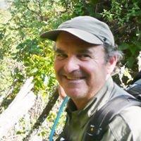 Andy Wertheim - Lake Tahoe Realtor