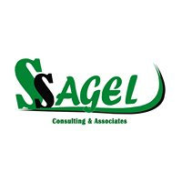 SSAGEL Consulting & Associates