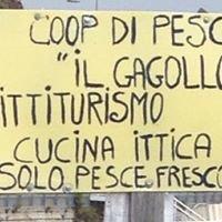 Gagollo
