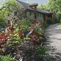 Tiffany Perennials & The Gardens At Mill Fleurs