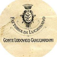 Fattoria di Lucignano Conte Lodovico Guicciardini