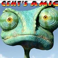 Wie Geht's Amigo