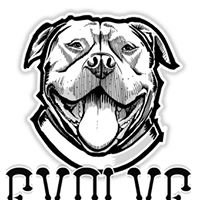 Evolve DTB Pet Products