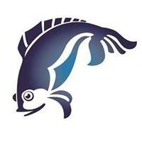 DiCarlo Seafood Co