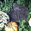 Morning Sun Florist