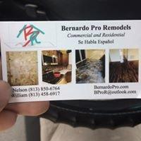 Bernardo Pro Remodels LLC