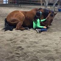Equine Enrichment