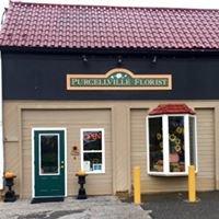 Purcellville Florist, Inc.