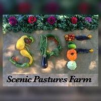 Scenic Pastures Farm