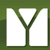 Young & Associates Insurance